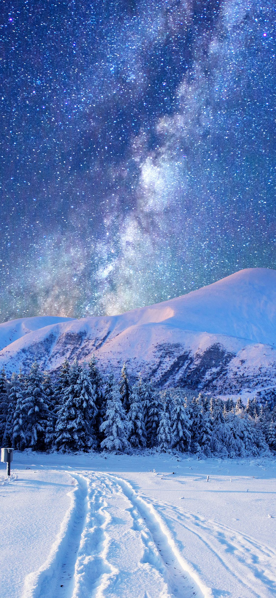 Starry Sky over Winter Landscape Mobile Wallpaper in 2020