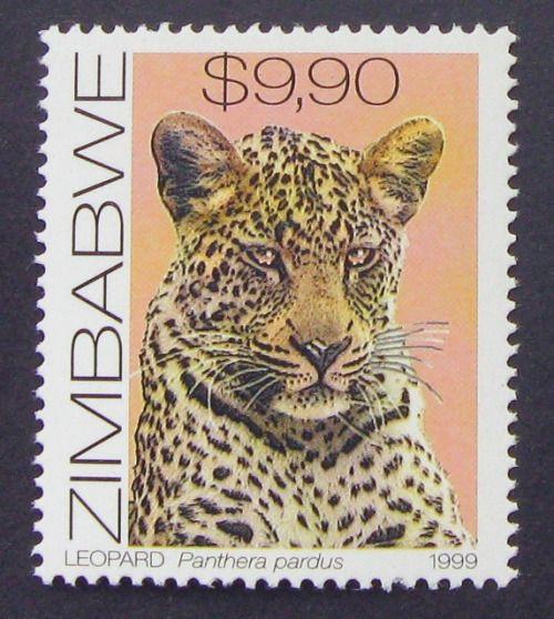 Zimbabwe - Leopard (Panthera pardus) - 1999 on Flickr.