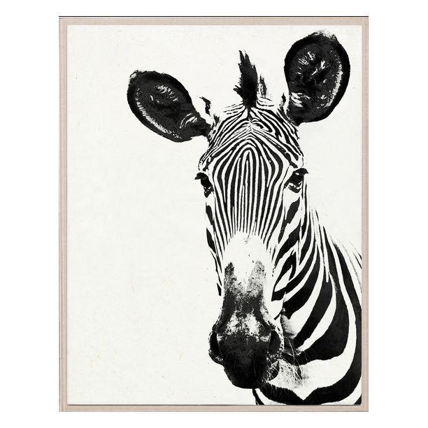 Tylinek Zebra   Рисунки   Pinterest   Acrylic frames, Acrylics and ...