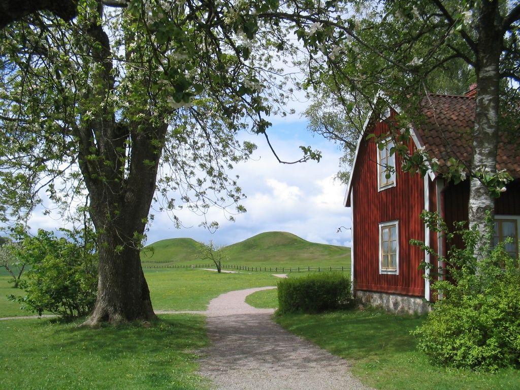 Sommer auf den lande in schweden eine schwalbe macht Schweden style einrichtung