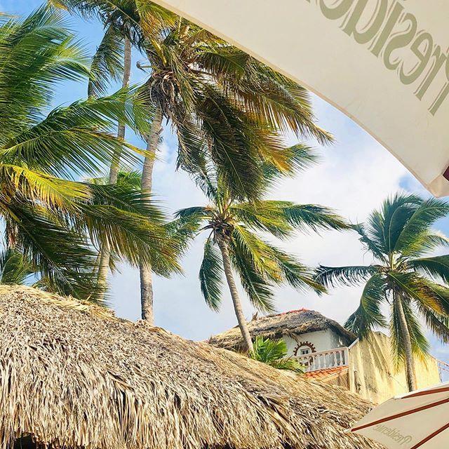 My Paradise  My Paradise  #catamaran#я#me#катамаран#отдых#пальмы#отпуск#загар#пляж#follow#love#like#wonderfullife#amazingview#beach#sunnyday#hotday#sky#palms#topgirls#ukrainiangirls#happy#holidays#bestvacation#instagram#life#happy#fitonyashka#like#landscape#girl#life