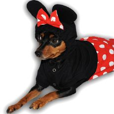 Mickey And Minnie Mouse Dog Costume I Need This For Roxy With