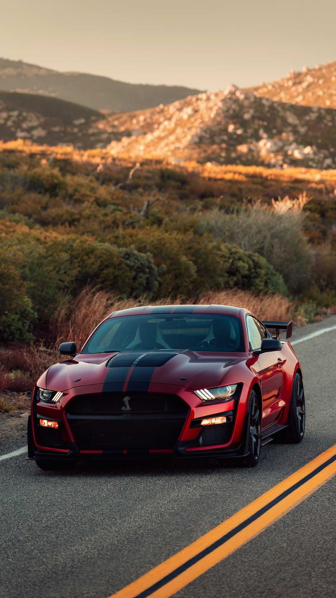 This Is My Dream Car Ford Mustang Shelby Gt500 Ford Mustang Shelby Mustang Shelby