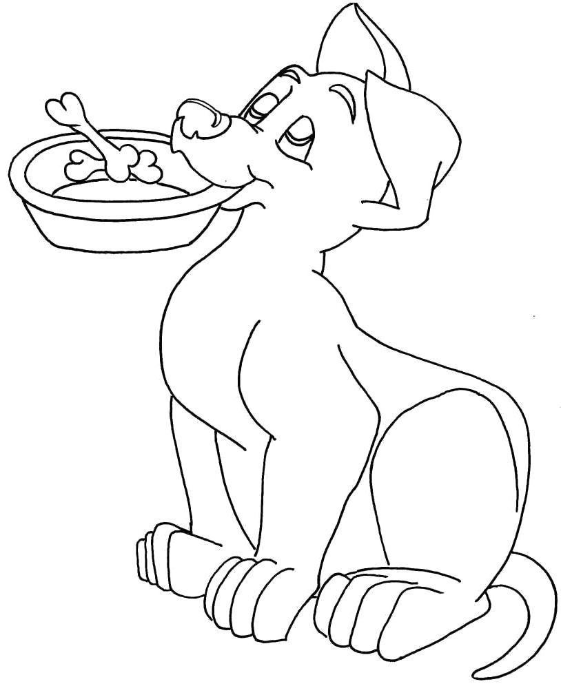 funny dog coloring page dog pinterest craft
