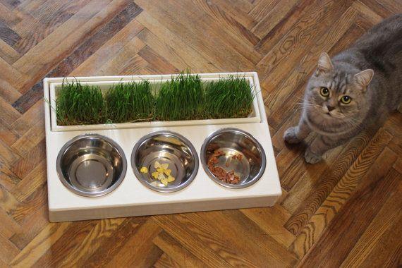 Dog bowl standelevated dog bowlraised dog feederelevated pet