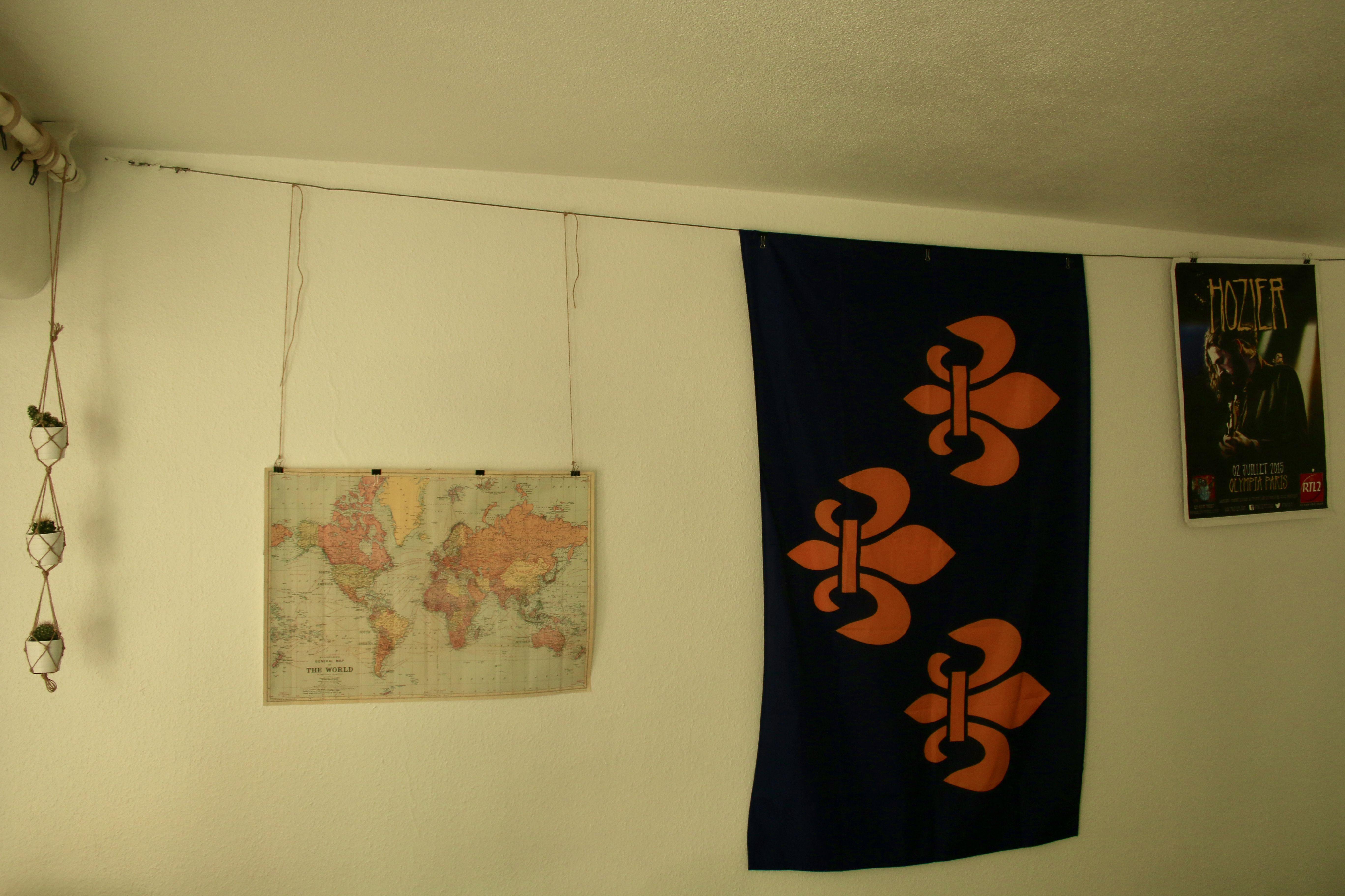 wall of travel ; fleur de lys | notre maison | Pinterest