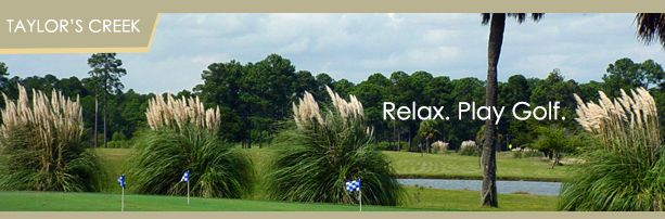 tcgolfbanner