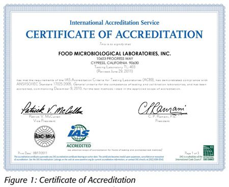 Sample Certificate Of Appreciation LSM SYSTEMS LSM EDUCATION - fresh certificates of appreciation examples