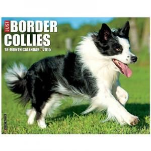 Just Border Collies 2015 Calendar $11.99