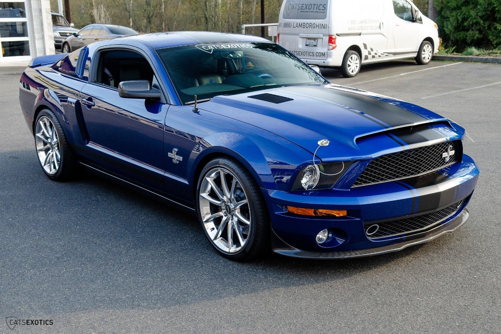 2009 Ford Mustang Shelby Gt500 Super Snake Ebay 2009 Ford