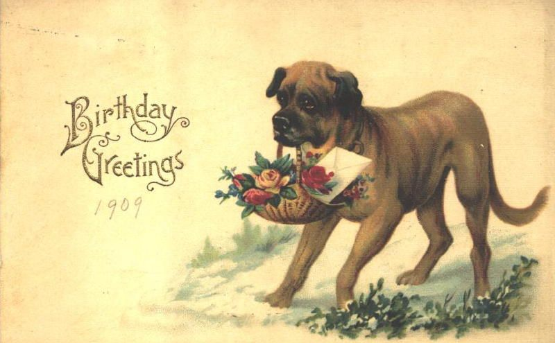 Vintage Greeting Cards Dogs