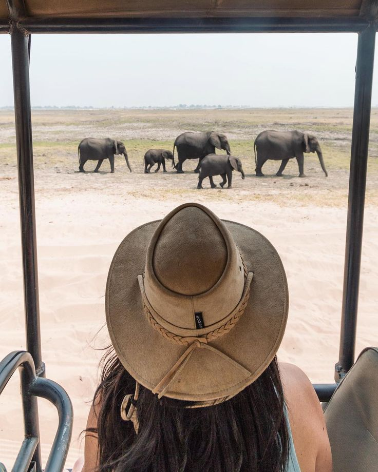 A complete African safari packing list (women and men). Including planning tips, safari outfit ideas and must haves for an African safari (shoes, etc). #honeymoon #honeymoondestinations