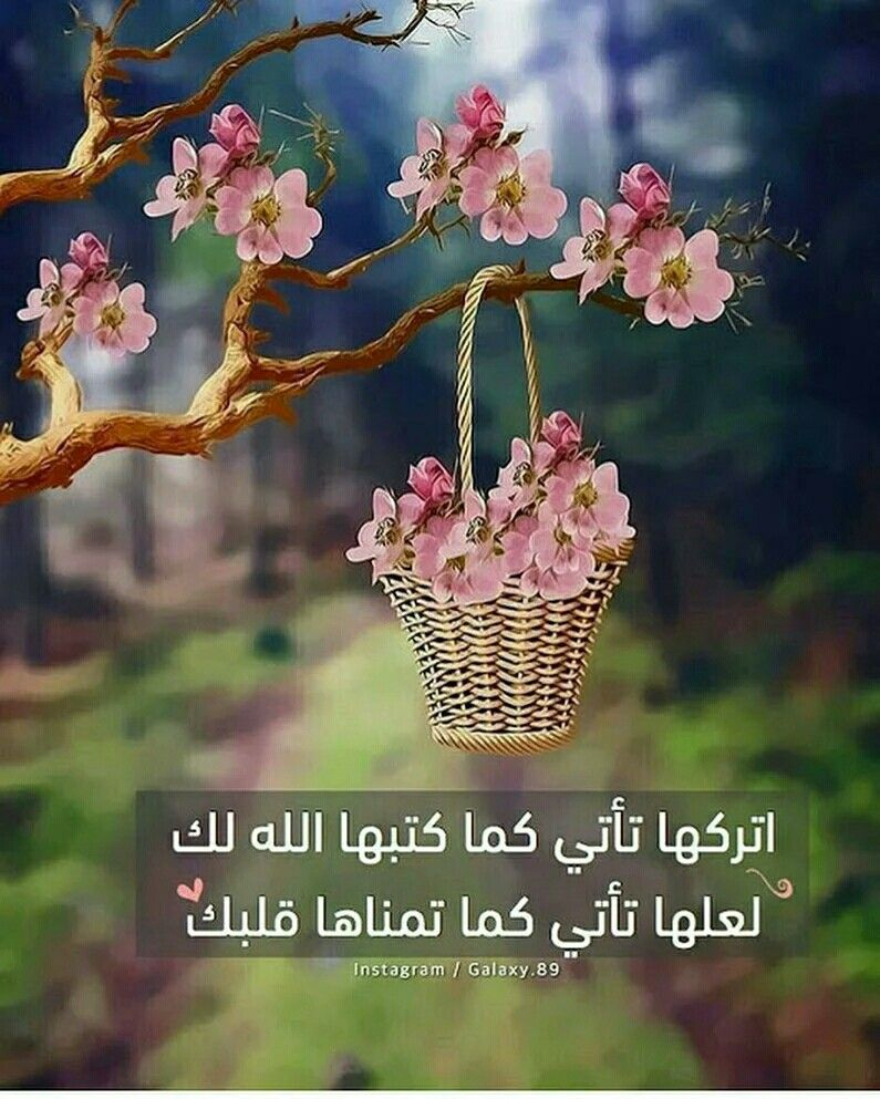 صباح الورد Quran Quotes Love Islamic Pictures Islamic Images