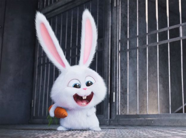 Which Secret Life Of Pets Character Should Be Your Pet Cute