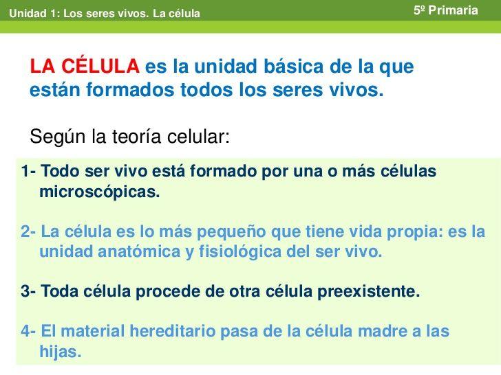 Tema 1 LOS SERES VIVOS. LA CÉLULA | La célula | Pinterest | Las ...