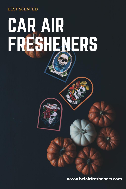 Car Air Fresheners in 2020 Car air fresheners, Air