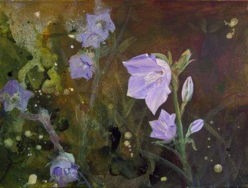 Glockenblume ~ Deborah Wulff