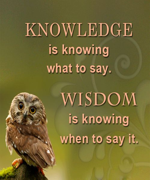 Funny Inspirational Quotes Wisdom: Knowledge Is Knowing What To Say