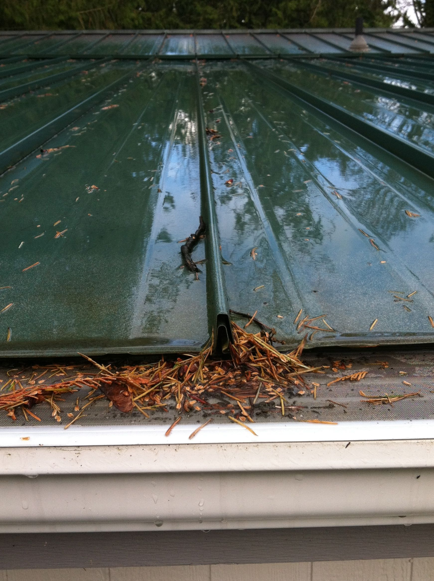 We Also Offer A Range Of Services Such As Gutter Repair Roof Treatments And Basic Gutter Downspout Tune Ups At Gutter Repair Leaf Filter Gutter Protection