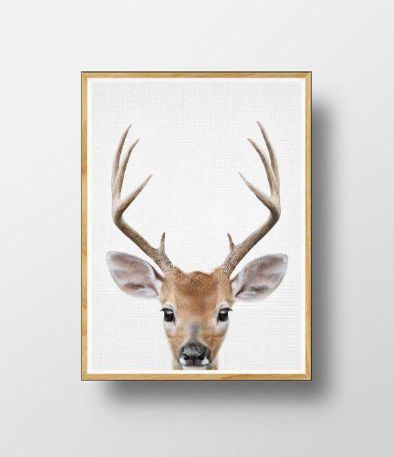 Deer Print Nursery Animals Nursery Deer Woodlands Etsy In 2021 Deer Poster Deer Art Animal Nursery
