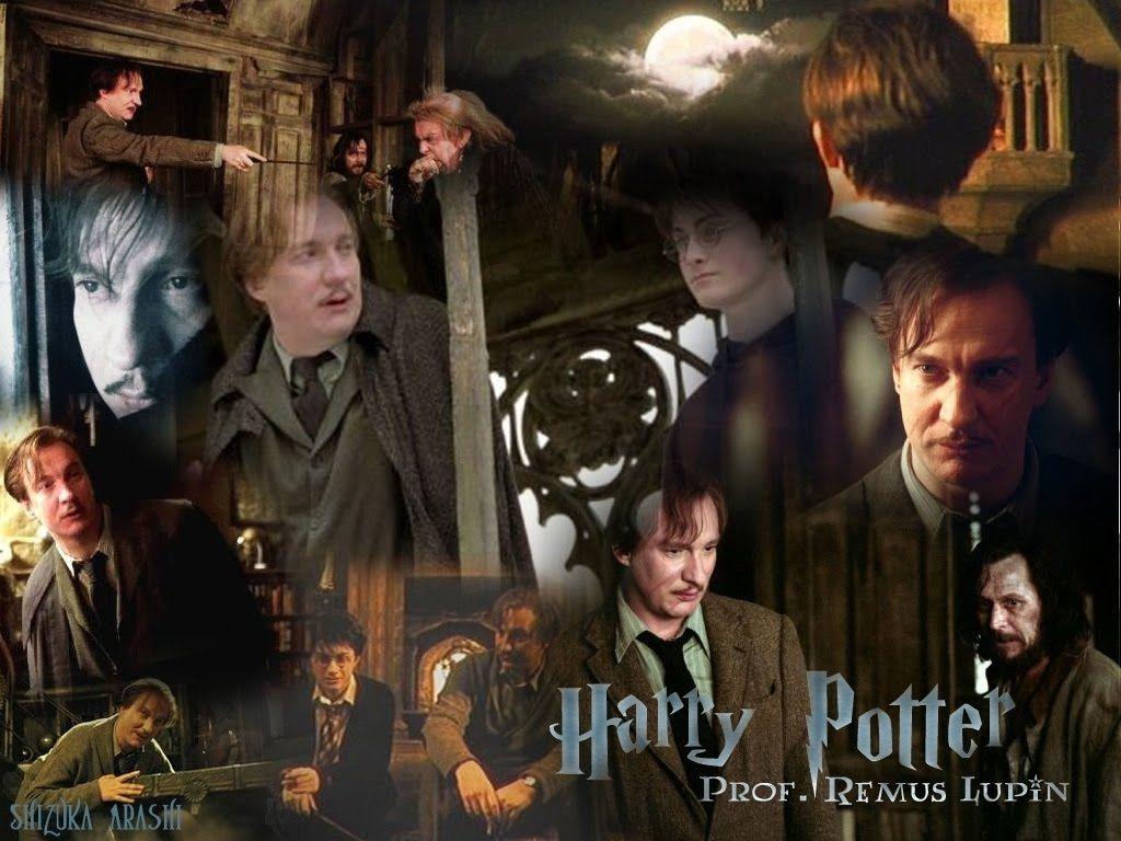 Harry Potter Lupin Harry Potter Weasley Harry Potter Harry Potter Professors