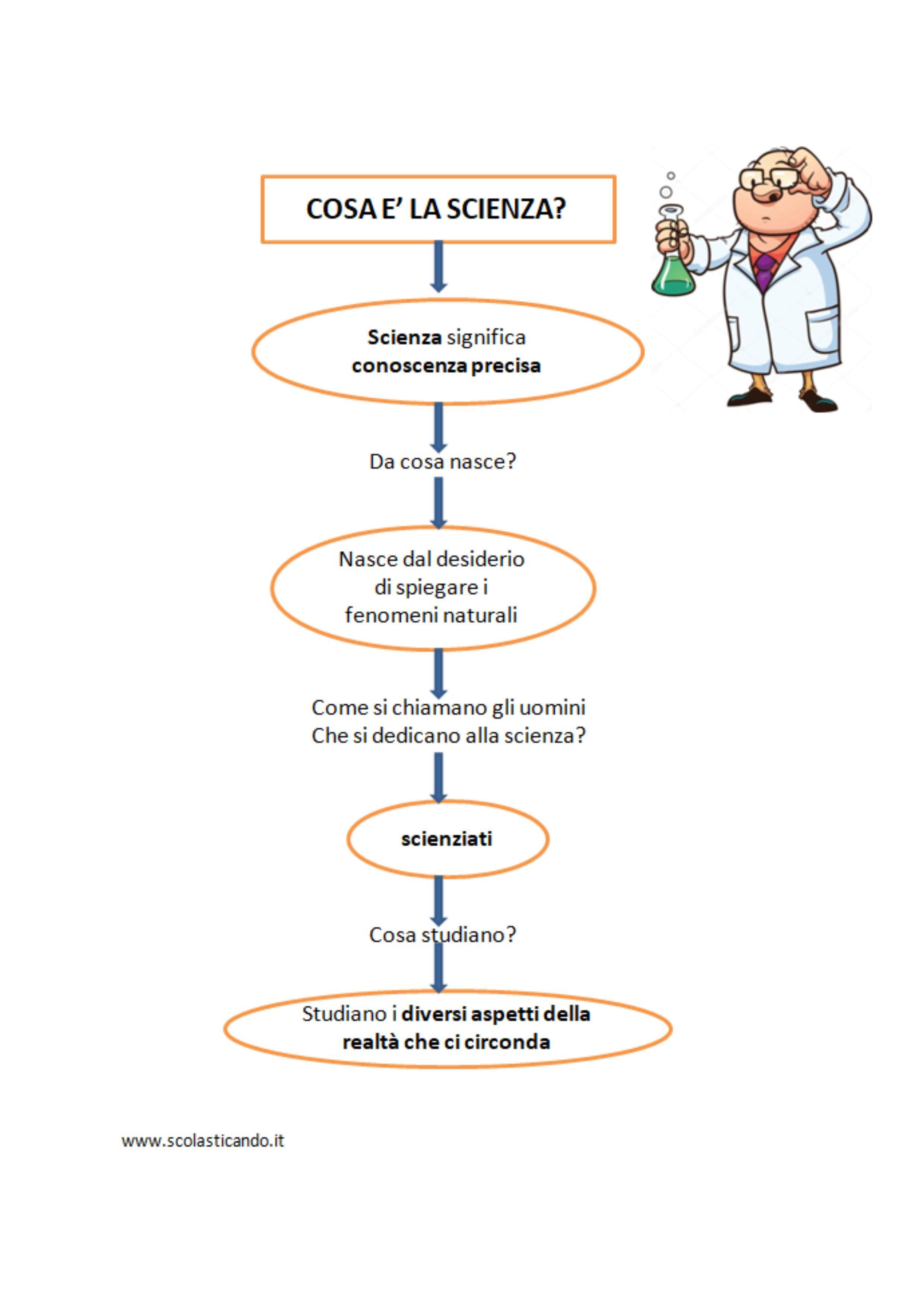 Mappe Concettuali Di Scienze Per La Classe Terza Della Scuola Primaria Le Schede Spiegano Cosa è La Scienza I Var Scienza Scienza Scuola Media Scienza Fisica