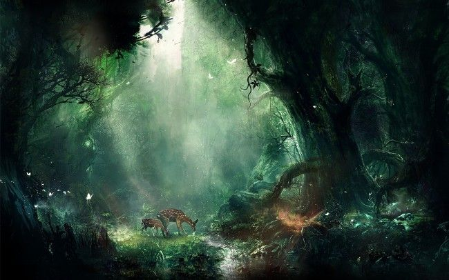 Fantasy Forest Ultra Hd 4k Wallpaper Download High Quality Landscape Wallpaper Landscape Illustration Fantasy Landscape