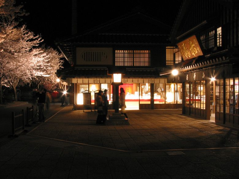 Cherry blossoms with isuzu chaya and akafuku store at night traditional lighting equipment of japan wikipedia