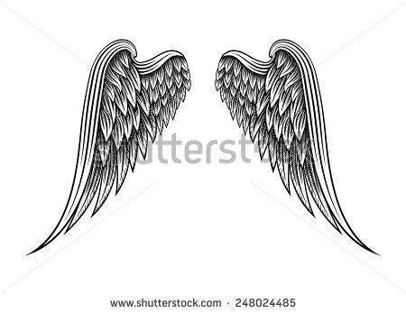 Sketch of two hand drawn angel wings isolated on white