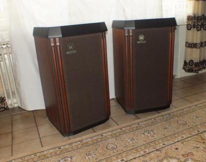Great Wersi Lautsprecher Boxen TS in Bochum Bochum S d Musikinstrumente und Zubeh r gebraucht