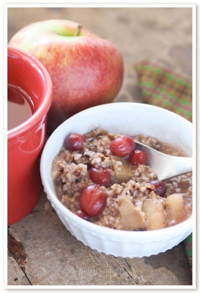 Apple Cranberry Steel Cut Oatmeal Recipe - Gwen's Nest
