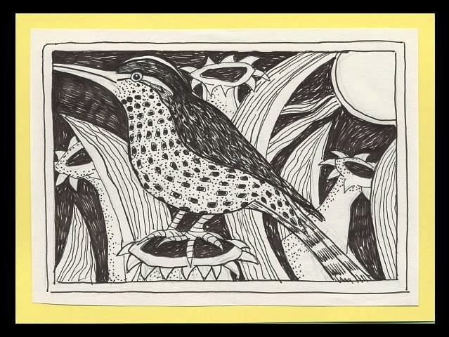Bird - Pen Drawing: plants, night, moon, garden.