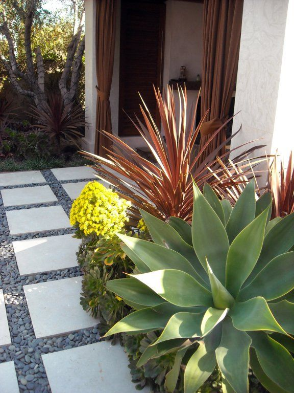 California Friendly With Images Backyard Landscaping 640 x 480