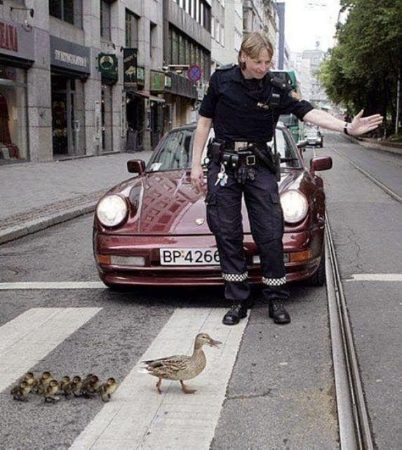 Cruzando la calle.