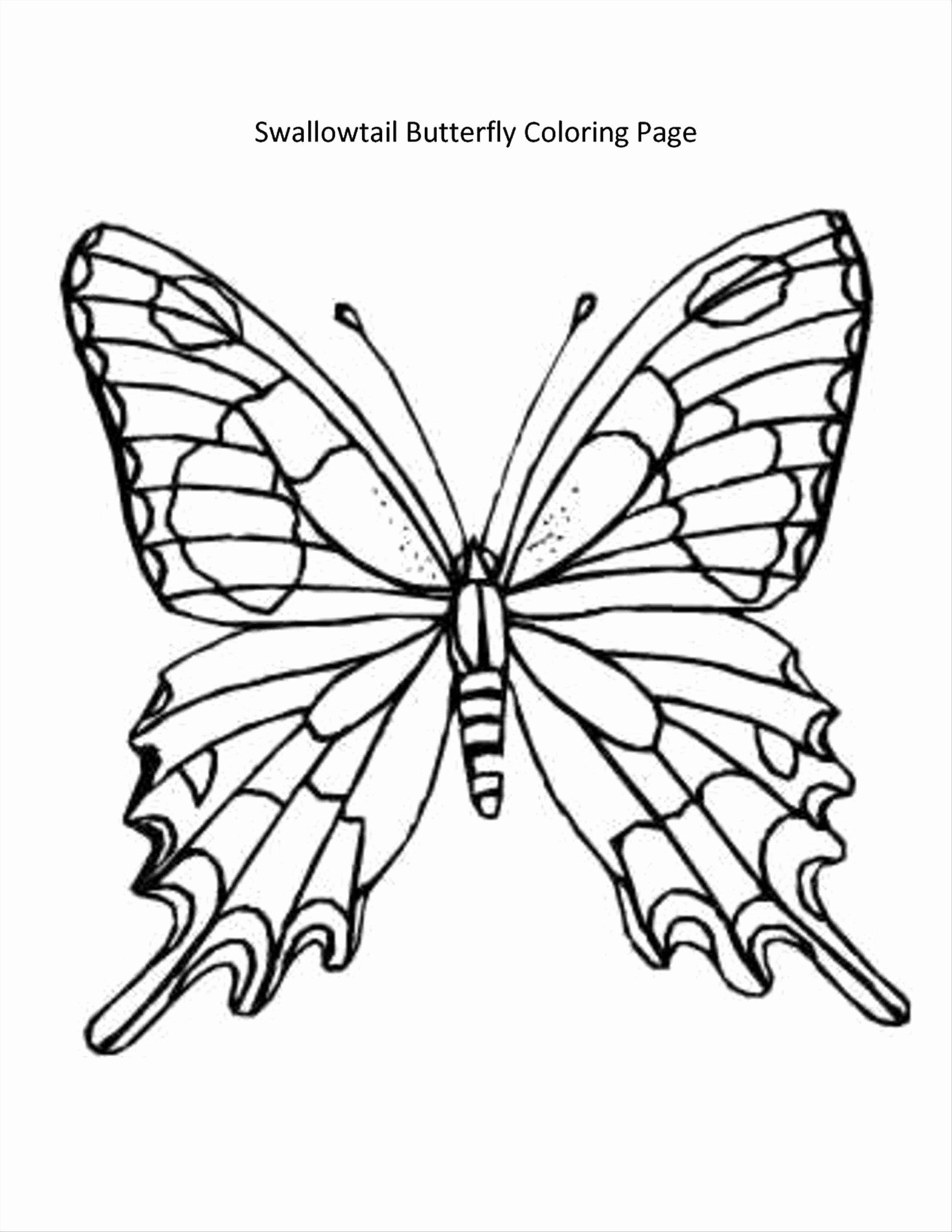 Monarch Butterfly Coloring Page New Pages Coloring Pages Coloring Butterfly Tot Butterfly Coloring Page Flower Coloring Pages Butterfly Printable