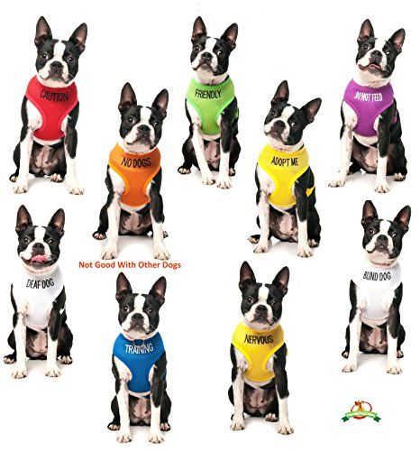 Nervous Color Coded Yellow Non Pull Dog Harness 4 Foot Leash