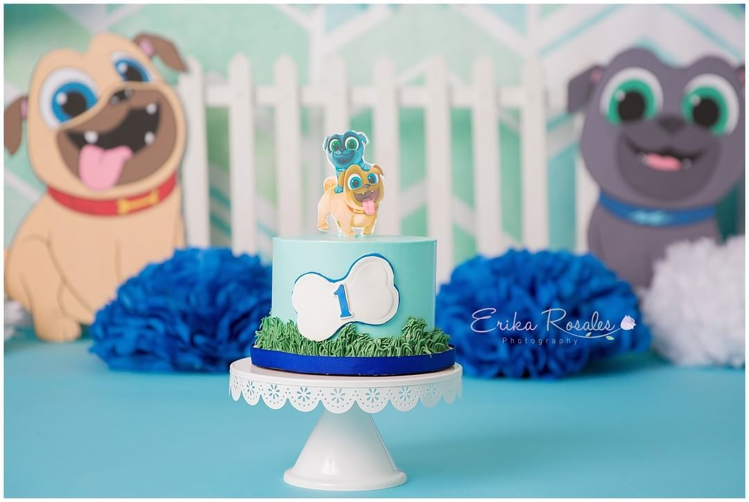 Smash Cake Puppy Dog Pals First Birthday Party Cake Smash Puppy