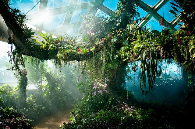 Denver Botanic Gardens Plains Conservation Center
