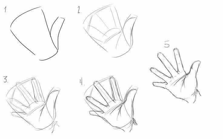 Hand 5 Steps How To Draw Hands Anime Drawings Tutorials Drawing For Beginners