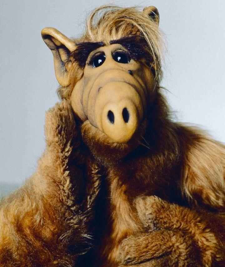 Alf Gordon