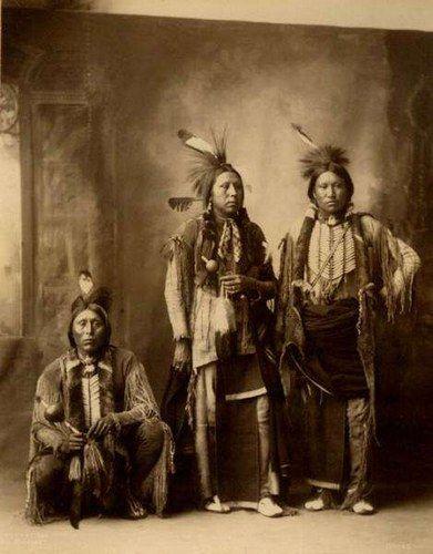 Les Indiens D Amérique Histoire : indiens, amérique, histoire, Indiens, D'Amérique, Photo, Album, Teemix, Indien, Amerique,, Indien,, Histoire, D'amérique