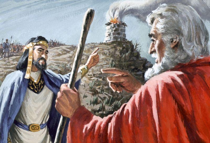 Bible Chapter Summaries