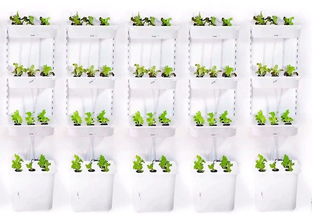 How To Build Indoor Hydroponic Gardens Using Ikea Storage Boxes Urban Gardens Hydroponic Gardening Hydroponic Growing Hydroponic Grow Systems