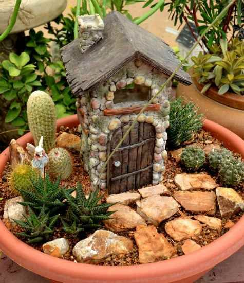 Birds Blooms Container Ideas Miniature Succulent Fairy Garden Love Garden And Outdoor