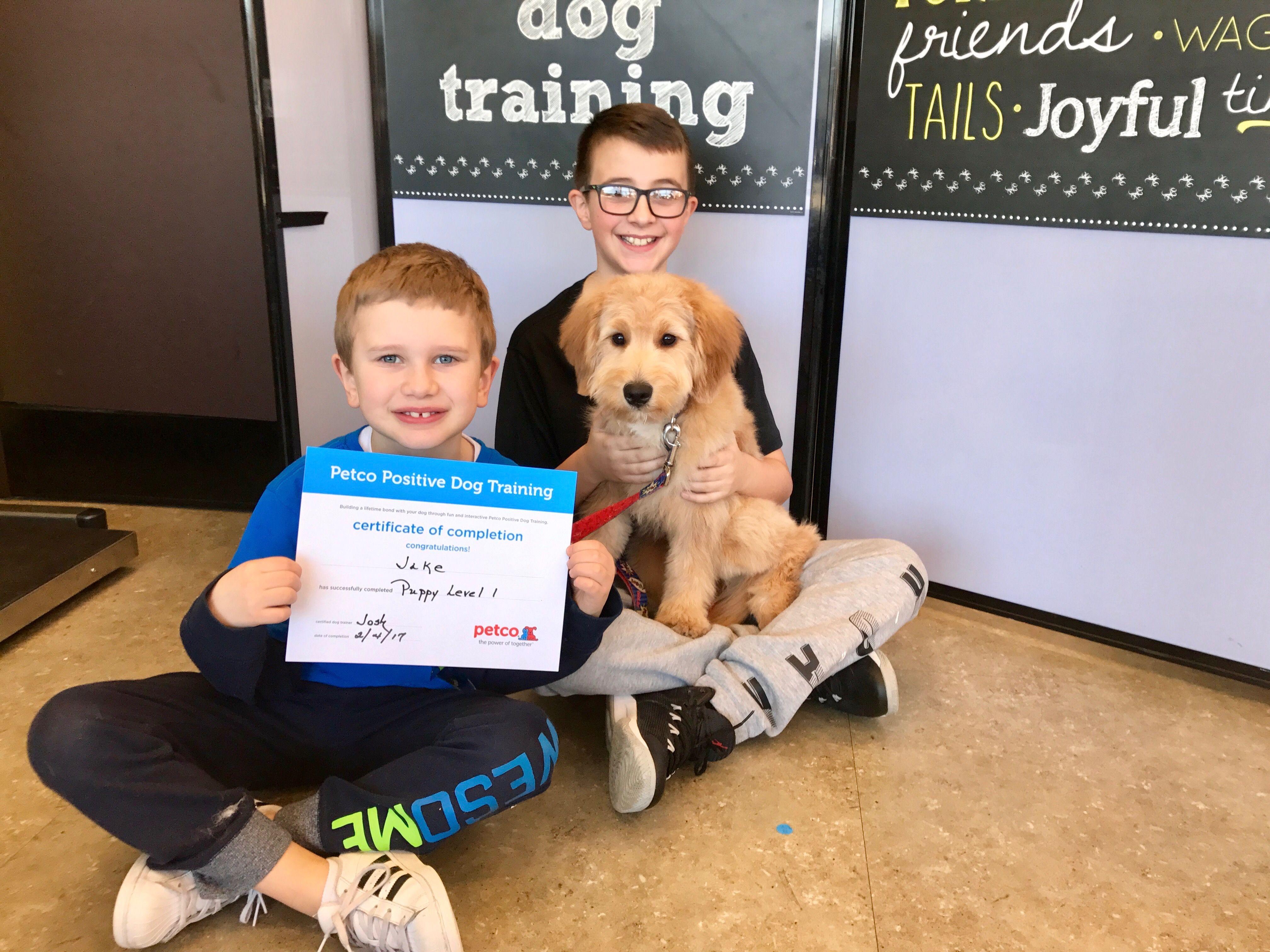 Puppy level 1 dog training graduate @ Petco | Mini