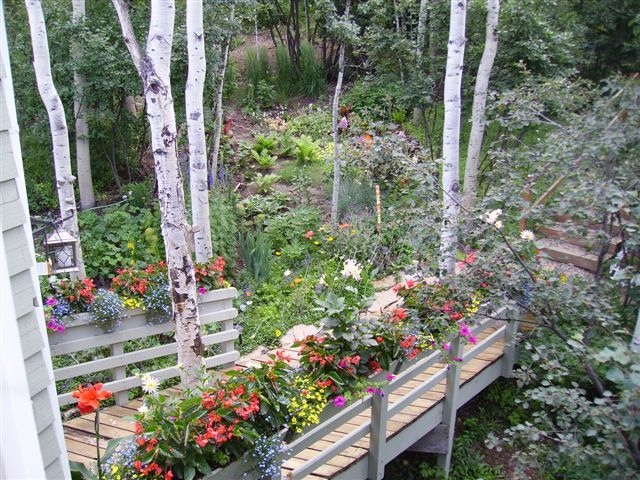 High Alude Gardening