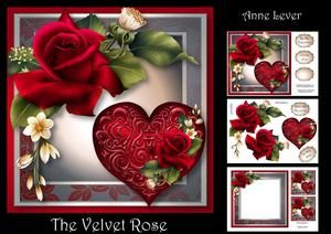 The Velvet Rose