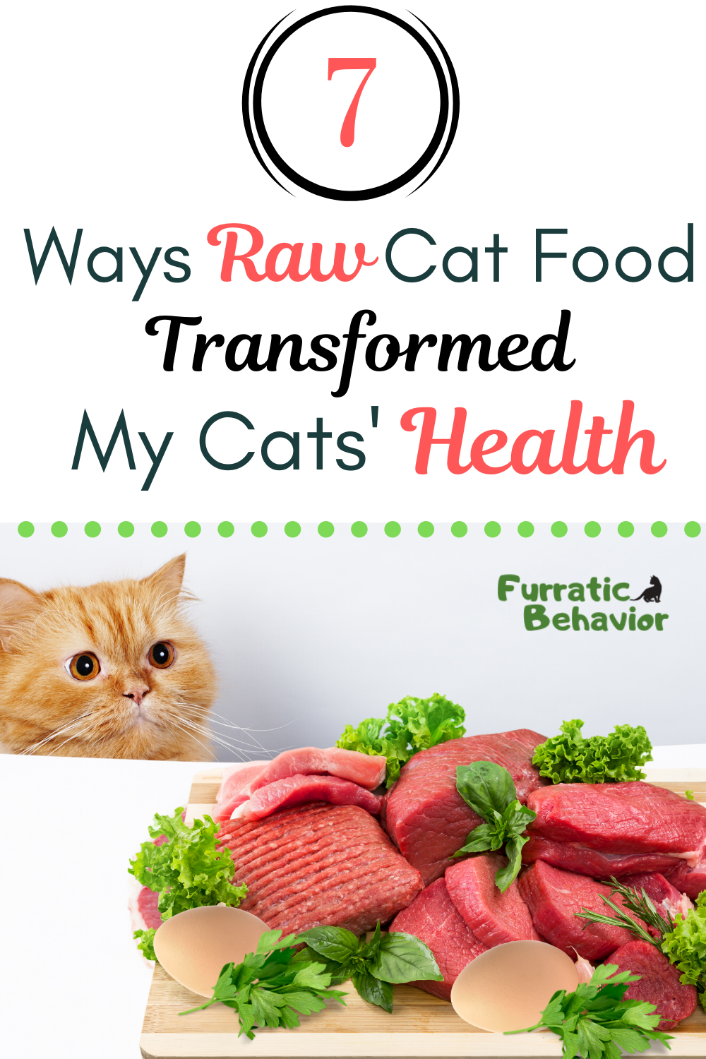 7 Ways Raw Cat Food Has Transformed My Cats Health In 2020 Raw Cat Food Recipes Raw Cat Food Diet Cat Food