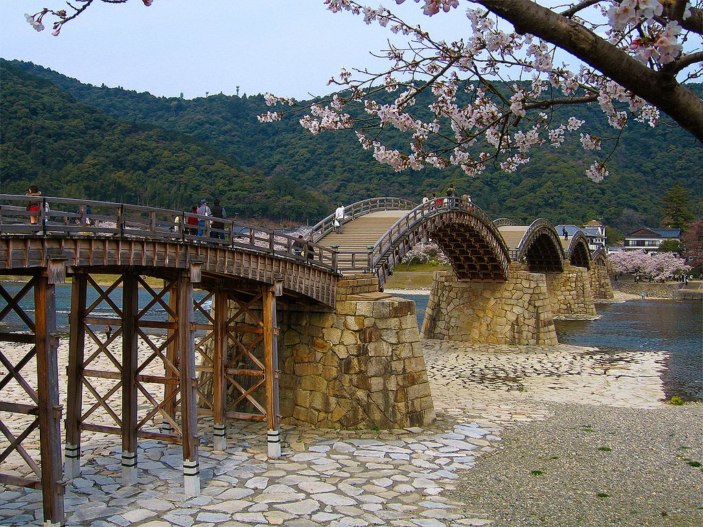 Japanese Garden Cherry Blossom Bridge 錦帯橋の桜 (cherry blossoms at kintai bridge) | cherry blossoms