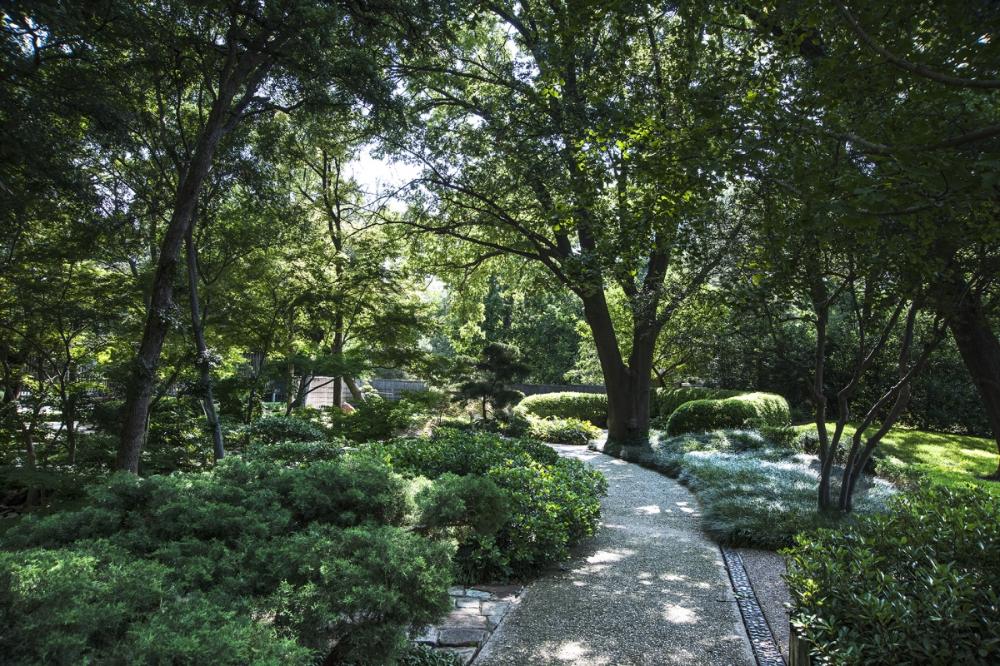 Fort Worth Japanese Garden Japanese Garden Japanese Gardening Fort Garden Gardening Japanese Worth Check Mo In 2020 Japanischer Garten Baumgarten Gardening